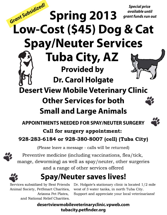Low-Cost Spay Neuter Services for Cats and Dogs