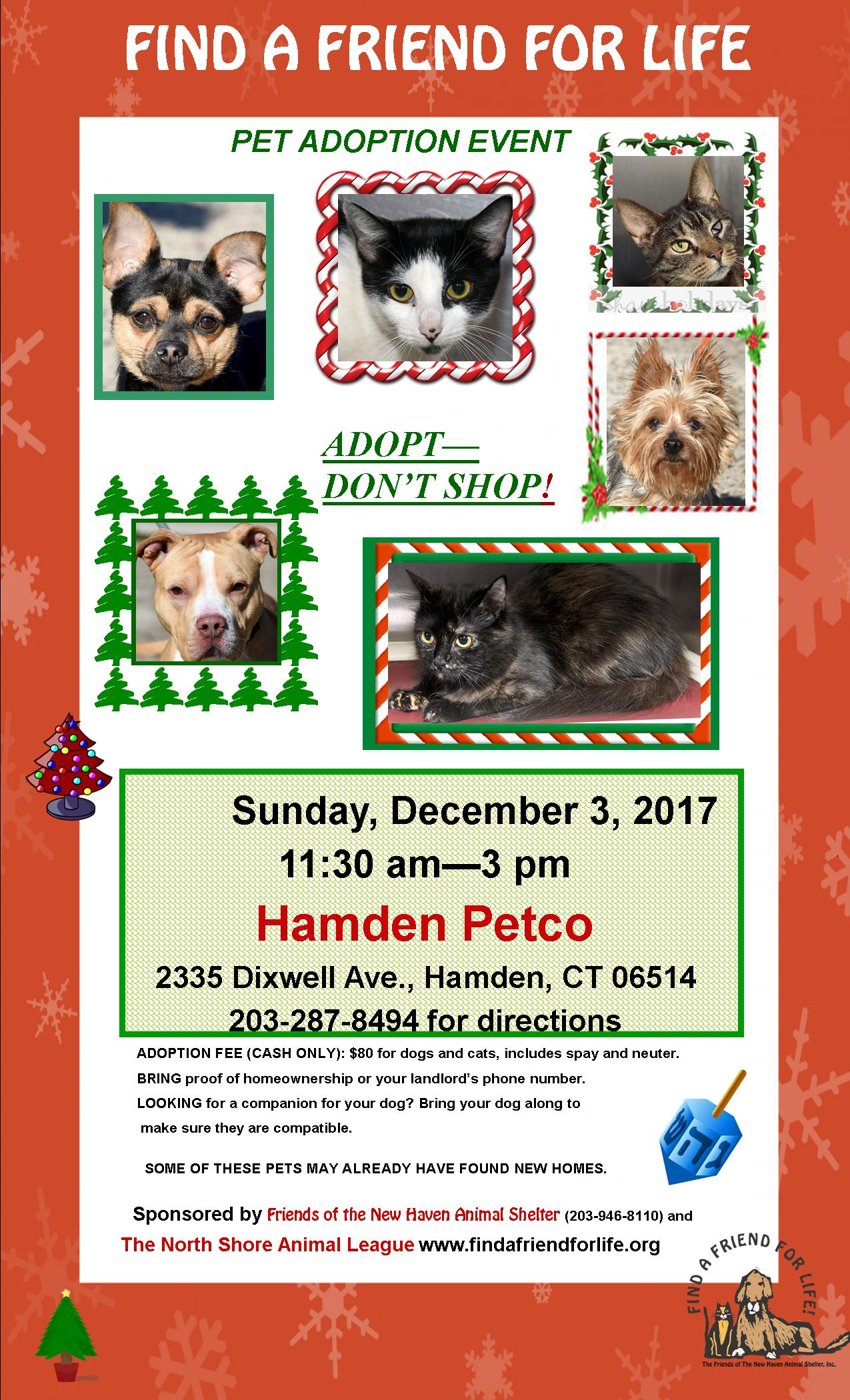 Friends Of The New Haven Animal Shelter