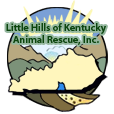 Little Hills logo