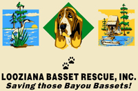 Looziana Basset Rescue T-Shirt