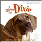 Dixie-cover-button.jpg 150x150