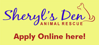 Sheryl's Den Adoption Online Application