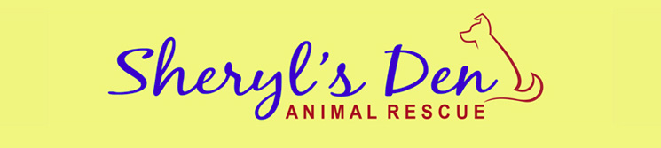 Sheryls Den of West Milford NJ Foster and Adoption Non-Profit