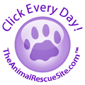 Please Click EVERY DAY to Feed Homeless Pets!