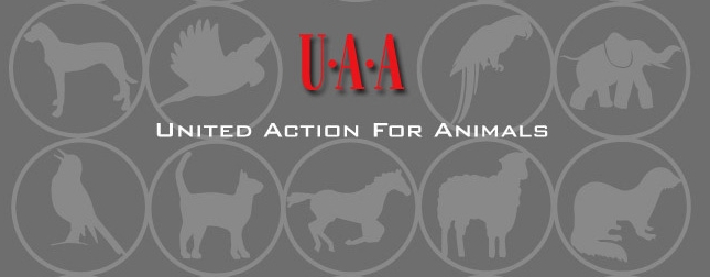 United Action for Animals